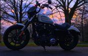 Harley-Davidson 1200 XL Iron - FOR SALE - Shmoo Automotive Ltd